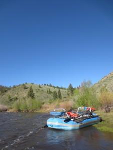 Trips we offer float
